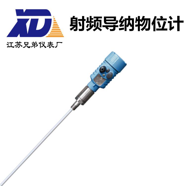 射频导纳物位计XDYSPZ16