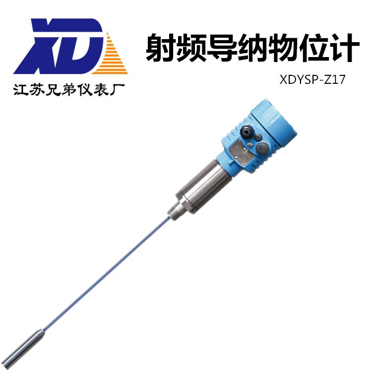 射频导纳物位计XDYSP-Z17